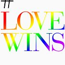 #LoveWins by tudi