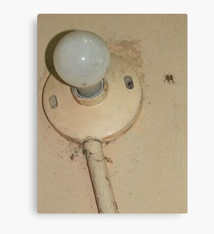 spider - light and shadow Canvas Print