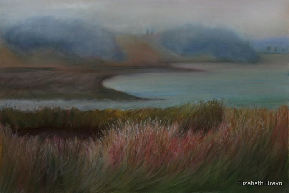 Winding water ways by Elizabeth Bravo