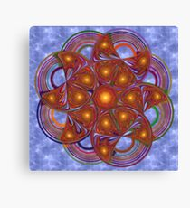Wheel of Paradigms Canvas Print