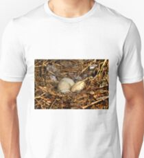 Canada Goose Eggs T-Shirt