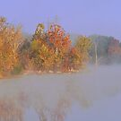 Foggy Autumn Reflections by Susan Blevins