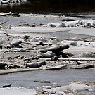 Ice Jams on the Red by Larry Trupp