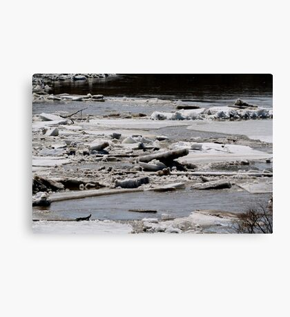 Ice Jams on the Red Canvas Print