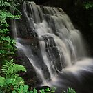 Tigers Clough Waterfall by spottydog06
