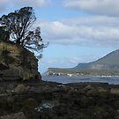 Clyde Island - Tasman Peninsula, Tasmania, Australia by pocketdelight