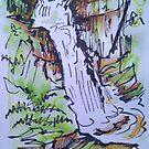 Dolgoch Falls, Talyllyn, Wales by Martin Williamson (©cobbybrook)