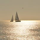 An Evening Sail by Corkle
