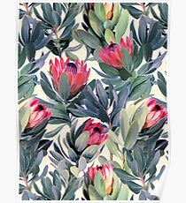 Gemaltes Protea-Muster Poster