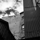 The Two Doves Behind Bars by Sebastian Reinholdtsen