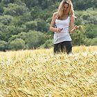 Into the fields by Alexander Kok