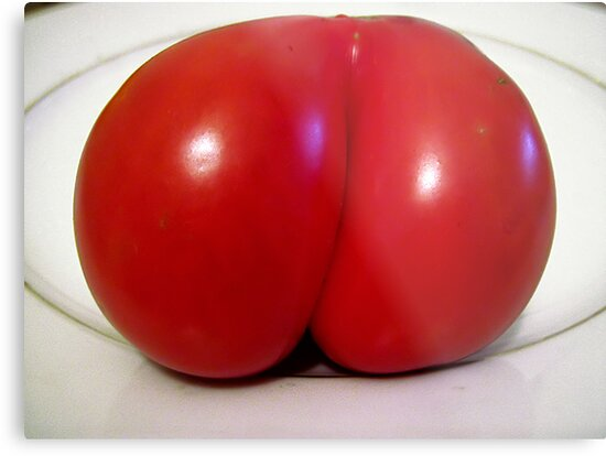 Naked tomato by Maria  Gonzalez