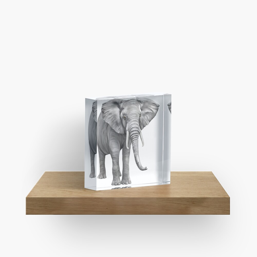 Large Elephant Acrylic Block