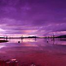 Purple sunrise by Gwynne Brennan