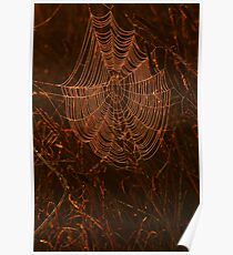 Glowing Cobweb Poster