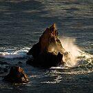 Ozeanwelle in der goldenen Stunde von Celeste Mookherjee