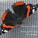 Au Revoir Butterfly card by sarnia2