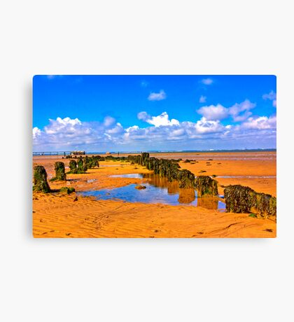 When the Tide is Out Canvas Print