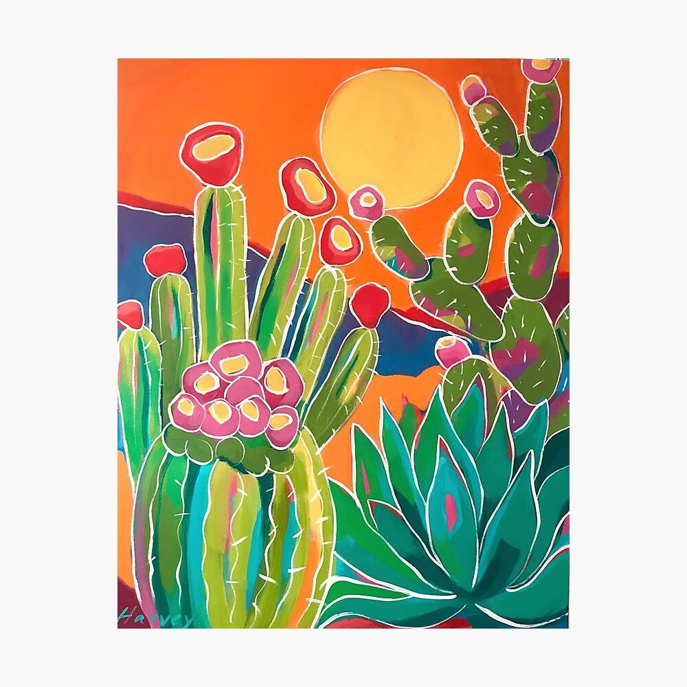 Cacti Sunset Photographic Print