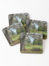 Picnic Table under an Ancient Tree Coasters