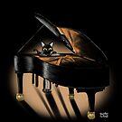 «Piano y gato» de BATKEI
