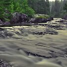Whitefish River by Dawne Olson
