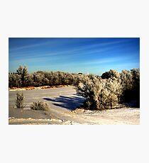 NATURE'S BRUSH  Photographic Print