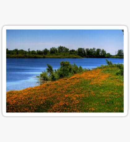 Field of Flowers - HDR Sticker