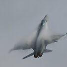 F18 Hornet by Peter Barrett
