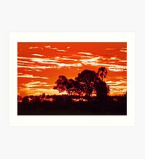 Sunset around kwetsani okavango delta Art Print