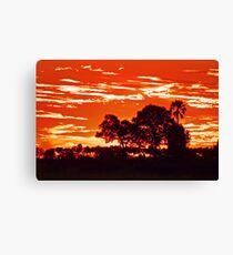 Sunset around kwetsani okavango delta Canvas Print