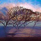 Sunset Tree by linaji
