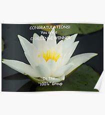 Challenge Winner Banner for 100% Group Poster