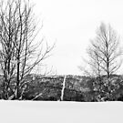 The Tiny Skislope in Trøndelag by Sebastian Reinholdtsen