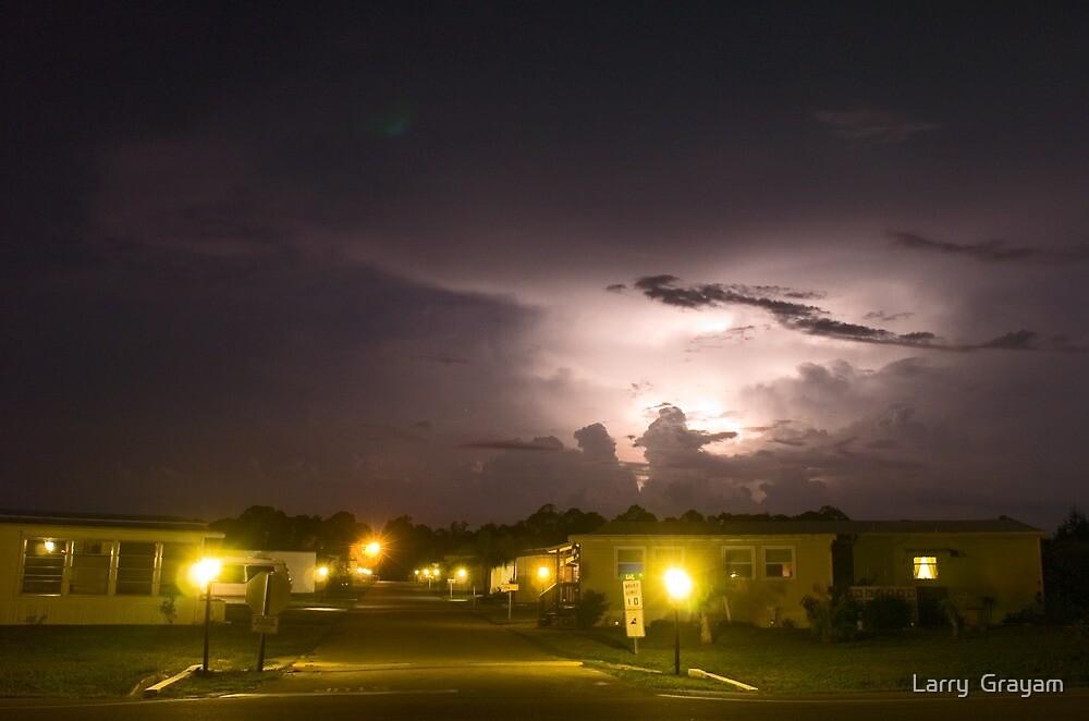 Trailer Park Lightning by Larry  Grayam