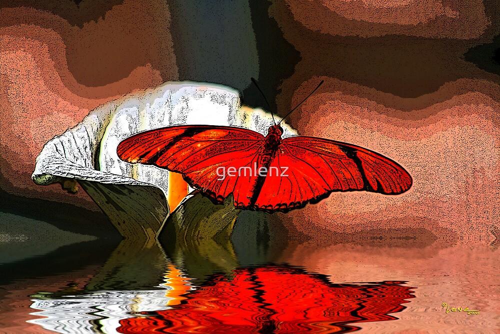 Orange Julia by George Lenz
