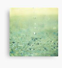 Drip drip Canvas Print