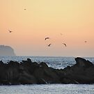 Sunrise View From Swansea to Redhead NSW Australia by Bev Woodman