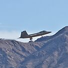 F-22 Raptor against the mountains by Henry Plumley