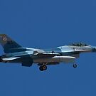 Blue camouflaged F-16 Fighting Falcon by Henry Plumley