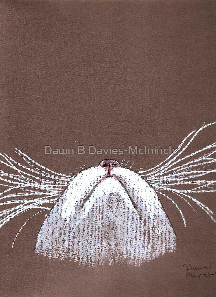 Just the cats whiskers by Dawn B Davies-McIninch