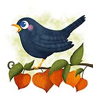 Blackbird sing illustration by Angela Sbandelli
