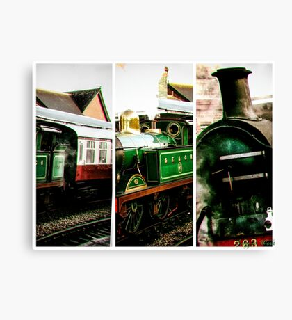 Steam on the Bluebell Line Canvas Print