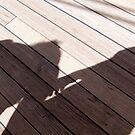 Walking the Planks by leesm19