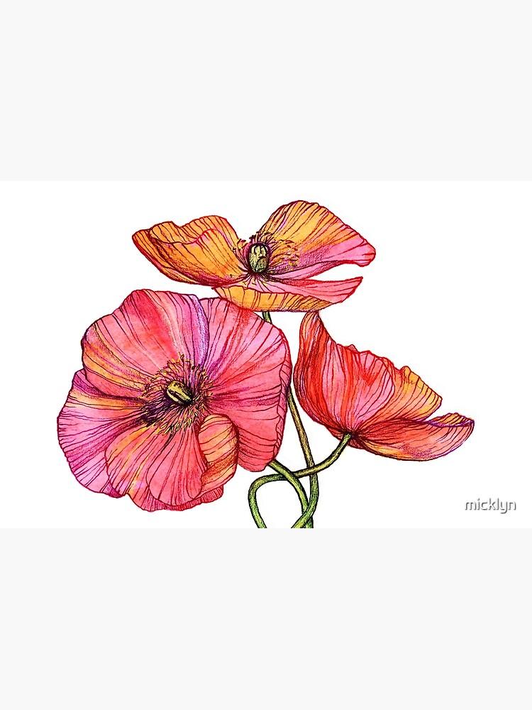 Peach & Pink Poppy Tangle de micklyn