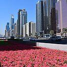 Dubai, Sheikh Zayed Road by AravindTeki