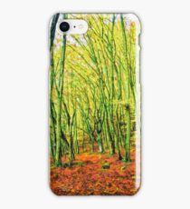 Autumn in a beech forest iPhone Case/Skin