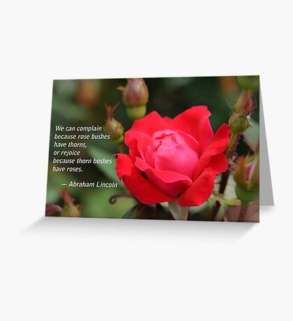 Rose on a Thorn Bush Greeting Card