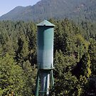 Glines Canyon Dam Water Tower by Stacey Lynn Payne