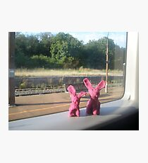 Rabbits on a train Photographic Print